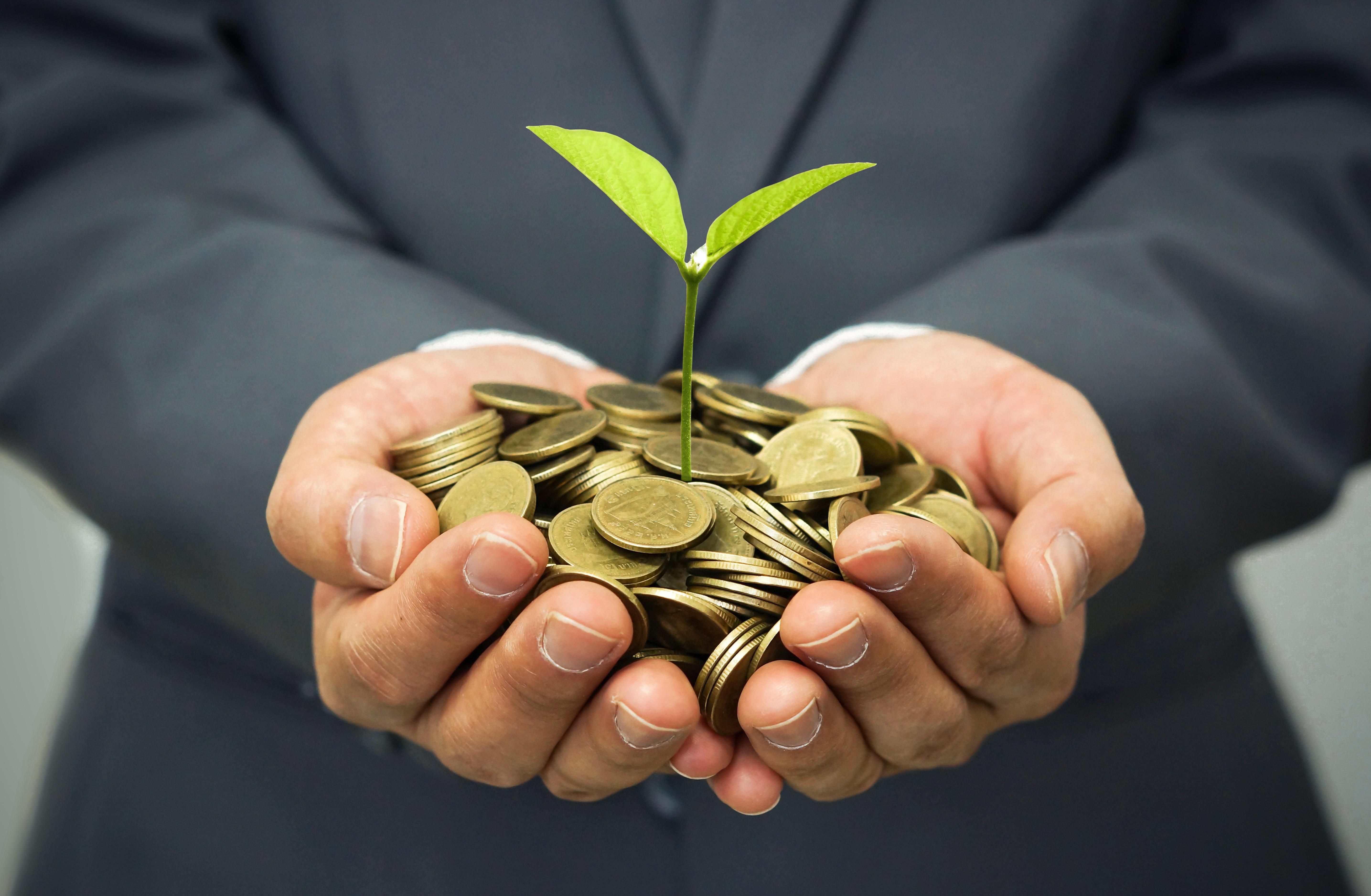 SRI_male_plant_coins.jpg