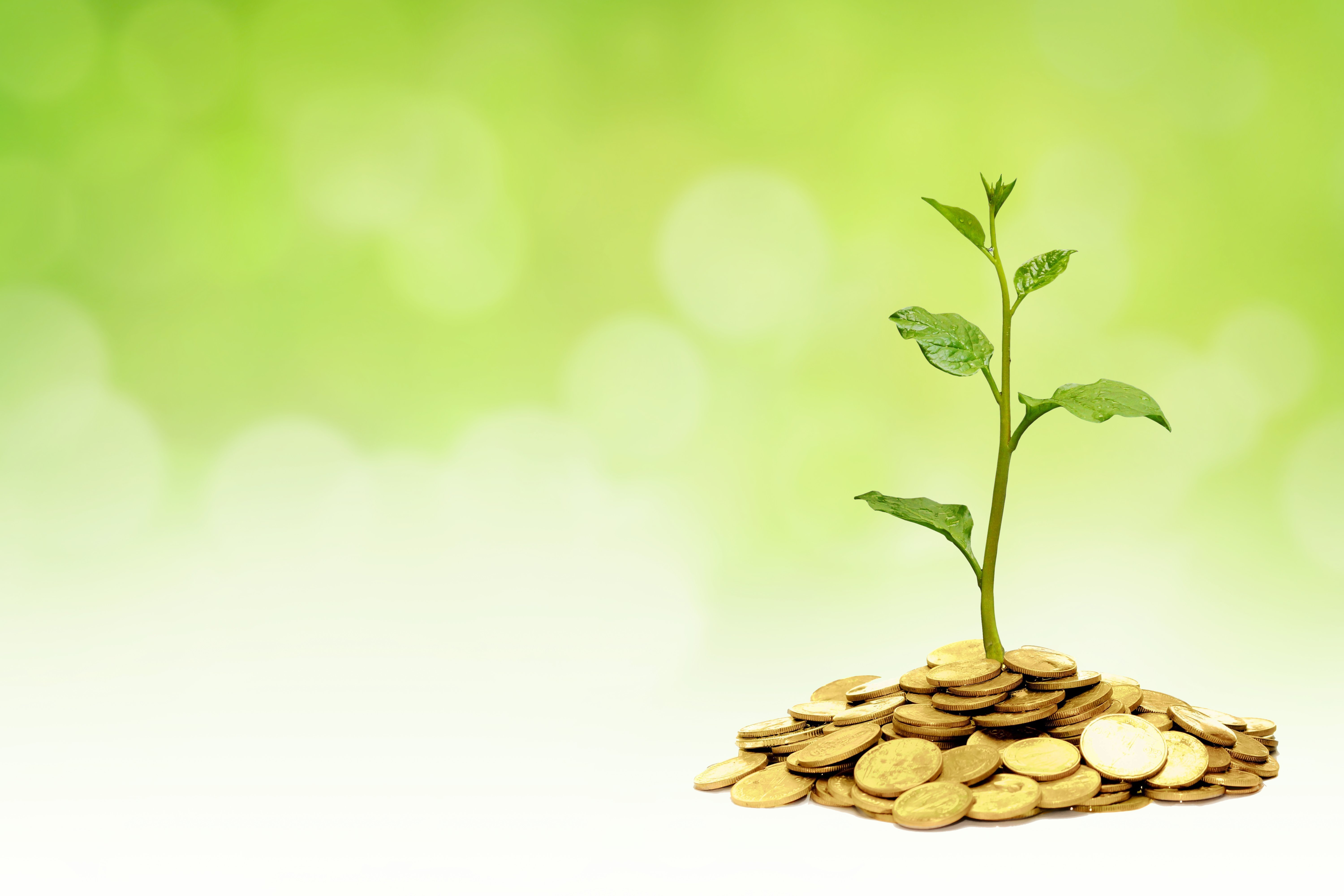 Socially_Responsible_Investment
